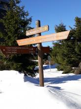 Skilanglauf Lehrgang des TVN bei frühlingshaften Temperaturen
